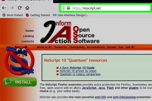 survey bypass noscript firefox